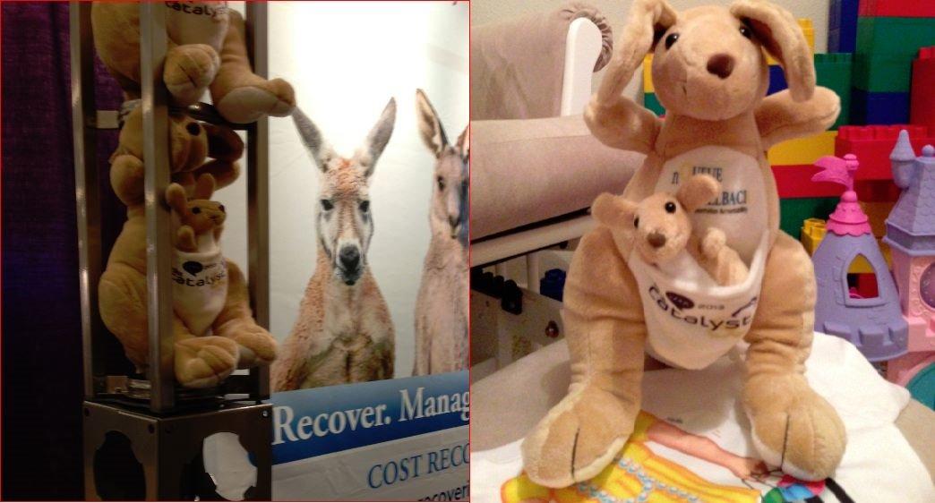 nQueue-kangaroo-complete