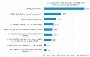 Digital Marketing: The Gap between Importance and Performance