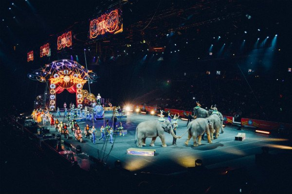 9 Little PR Stories from My Stint with the Ringling Bros. and Barnum & Baily Circus